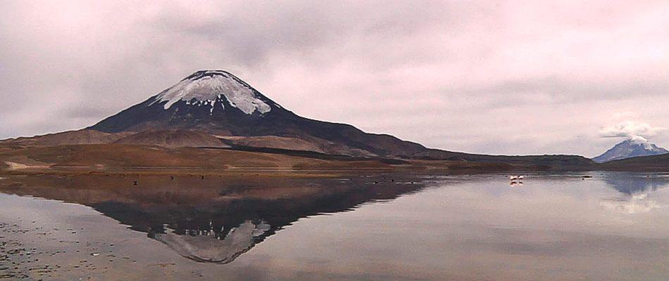 Nevado Parinacota Lago Chungara Altiplano de Arica y Parinacota