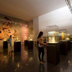 Museo de Azapa Cultura Chinchorro