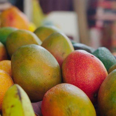 Gastronomia Region de Arica y Parinacota mangos frutos tropicales