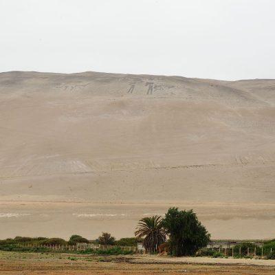Geoglifos Valle de Lluta figuras