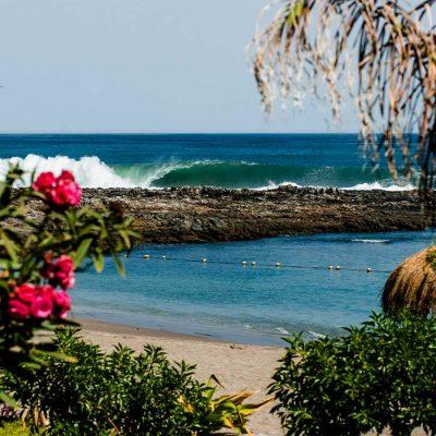 Jardines coloridos Playa La Lisera borde costero Arica y Parinacota