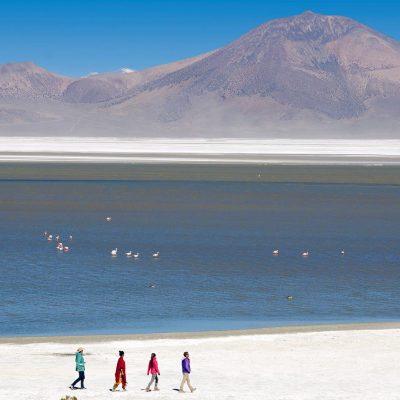 Nevado en parque nacional Lauca altiplano de region de Arica y Parinacota 2