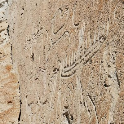 Petroglifos de Rosario Valle de Lluta detalles
