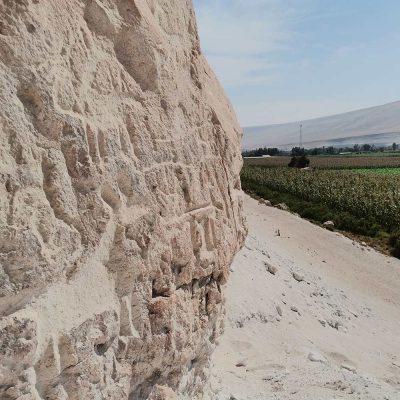 Petroglifos de Rosario Valle de Lluta y cultivo de maíz