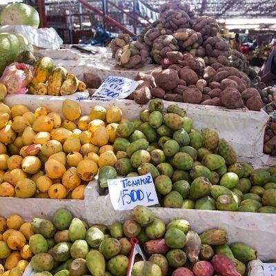 Terminal Asoagro frutas II Region Arica y Parinacota