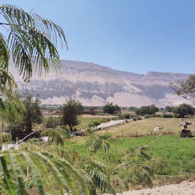 Vista Pueblo Molinos Valle de Lluta cultivos