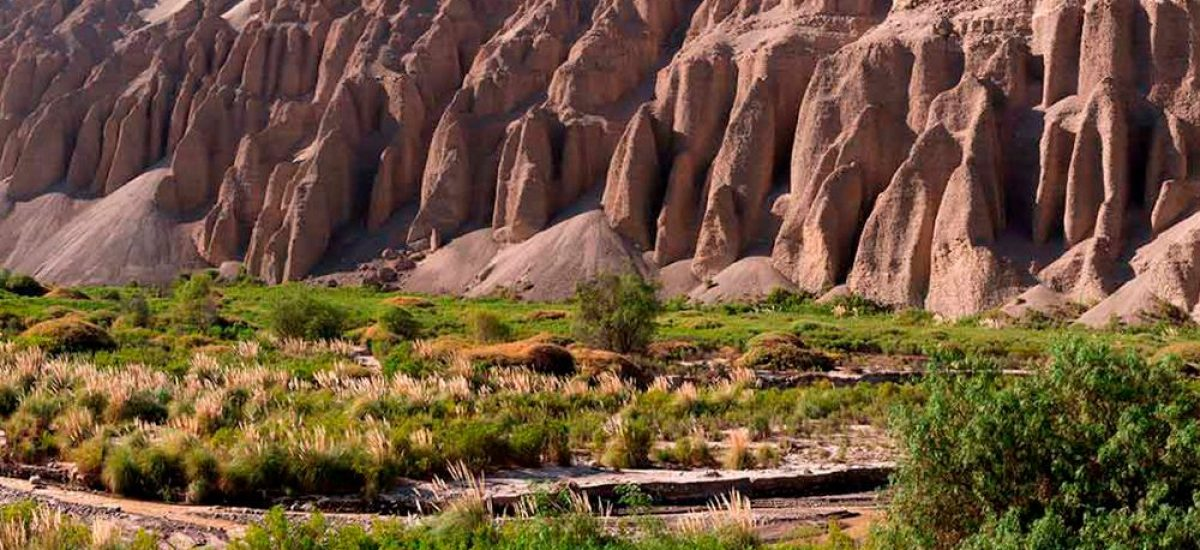 Vista Valle de Camarones Huancanare