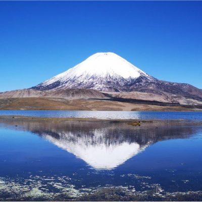 Parque Nacional Lauca Altiplano Arica y Parinacota